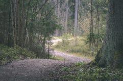 lege weg in het platteland in de zomer grintoppervlakte - vintag Stock Afbeeldingen