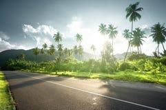 Lege weg in wildernis van Seychellen Stock Afbeelding