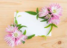 Lege witte groetkaart met roze cherysanthemum royalty-vrije stock foto's