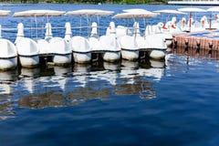 Lege witte zwaanboten die op de blauwe lagune met bezinning over het water drijven royalty-vrije stock foto