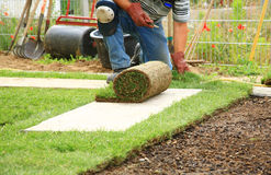 Legen der Grasscholle für neuen Rasen stockbild