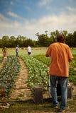 Legen von Bewässerung Lizenzfreie Stockfotografie