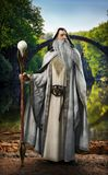 Legendarny biały czarownik pozuje przed mitycznym zaczarowanym położeniem ilustracji