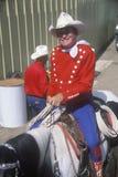 Legendarny Monty Montana Obraz Royalty Free