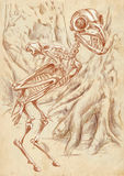 Legendary animals and monsters: HARPY. Illustration of a series of legendary animals and monsters (skeleton): HARPY. An hand drawn and painted full sized Stock Photography