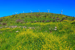 Legendary Golan Heights Royalty Free Stock Image
