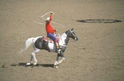Legendary Monty Montana Royalty Free Stock Images