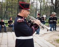 Legermuzikant bij de eedceremonie royalty-vrije stock afbeeldingen