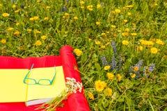 Legga un libro in un prato dei fiori variopinti selvaggi Fotografia Stock Libera da Diritti