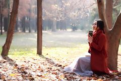 Leggendo in natura è il mio hobby, ragazza con il libro e tè nel parco di autunno Fotografie Stock Libere da Diritti