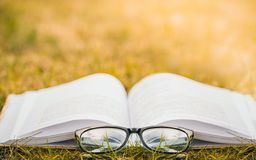 Leggendo in natura Lettura all'aperto di ricreazione un libro fotografie stock