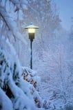 Leggermente nevicando Fotografia Stock