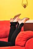 Leggings Stock Photography