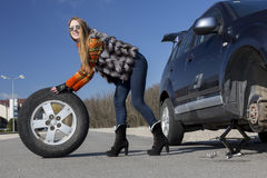 Leggy beautiful female holds big wheel Royalty Free Stock Image