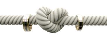 Leghi il nodo con gli anelli di cerimonia nuziale Immagine Stock