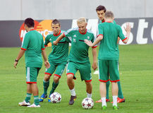 LEGIA WARSAW OFFICIAL TRAINING Royalty Free Stock Image