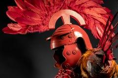 Legionary преторианский, красный панцырь для женщин с римским шлемом, ada Стоковая Фотография