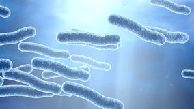Legionella bacteria in water, 3D illustration