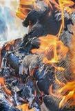 Legna da ardere bruciante della betulla Fotografia Stock Libera da Diritti