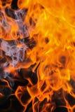 Legna da ardere bruciante della betulla Immagine Stock Libera da Diritti