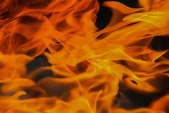 Legna da ardere bruciante della betulla Fotografie Stock Libere da Diritti