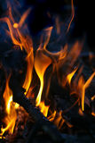 Legna da ardere bruciante della betulla Immagini Stock Libere da Diritti