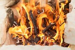 Legna da ardere bruciante nel fuoco Immagine Stock Libera da Diritti