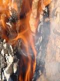 Legna da ardere bruciante nella fine del camino su, fondo del carbone fotografie stock libere da diritti
