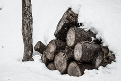 Legna da ardere coperta in neve Fotografie Stock Libere da Diritti