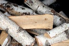 Legna da ardere della betulla Fotografie Stock Libere da Diritti