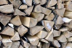 Legna da ardere della betulla per il riscaldamento la casa e del giardino Fotografia Stock Libera da Diritti
