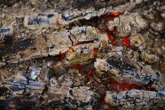 legna da ardere di fuoco senza fiamma Immagini Stock Libere da Diritti