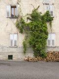 Legna da ardere ed edera contro la vecchia facciata della casa francese in Alta Provenza Fotografia Stock Libera da Diritti