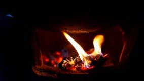 Legna da ardere nella cottura archivi video