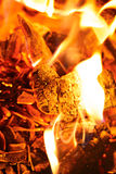 Legna da ardere nelle fiamme Immagini Stock Libere da Diritti
