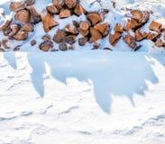 Legna da ardere segata che si trova sulla neve nell'inverno Immagini Stock