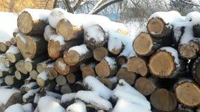 Legna da ardere sotto la neve Immagine Stock Libera da Diritti