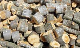 legnaia dei ceppi e dei tronchi cutted immagine stock