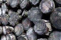 Legname accatastato, ceppi del legname, legna da ardere immagini stock