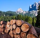 Legname che collega le alpi austriache Immagini Stock