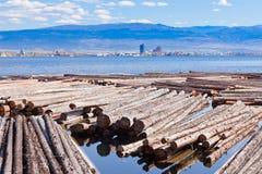 Legname che fa galleggiare BC il lago Kelowna Canada Okanogan immagine stock