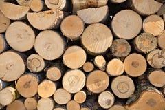 Legname di legno ad una segheria Fotografia Stock Libera da Diritti