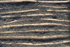 Legname di legno in ghiaia Fotografia Stock