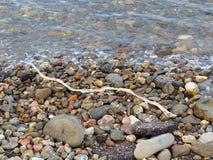Legname galleggiante candeggiato su Rocky Seashore fotografie stock