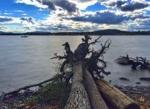 Legname galleggiante che indica in Hudson River Fotografia Stock Libera da Diritti