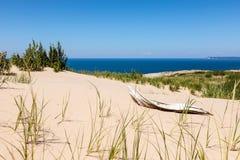 Legname galleggiante delle dune dell'orso di sonno Fotografia Stock Libera da Diritti