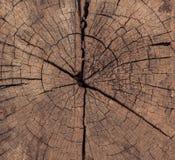 Legname grezzo, recinto a stecche di legno o fondo della parete dell'assicella fotografia stock