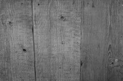 Legname stagionato grigio Fotografia Stock Libera da Diritti