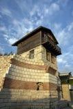 legno alto della costruzione di mattone Fotografia Stock