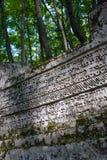 legno antico delle pietre tombali Immagine Stock Libera da Diritti